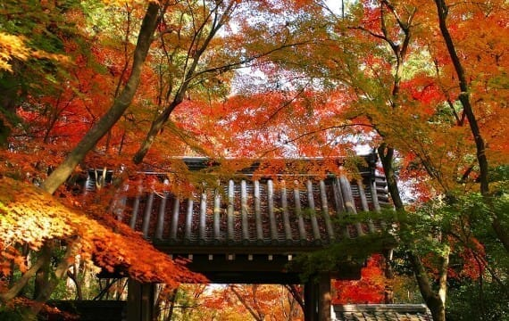 japanese-style_00001