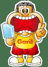 img_gari