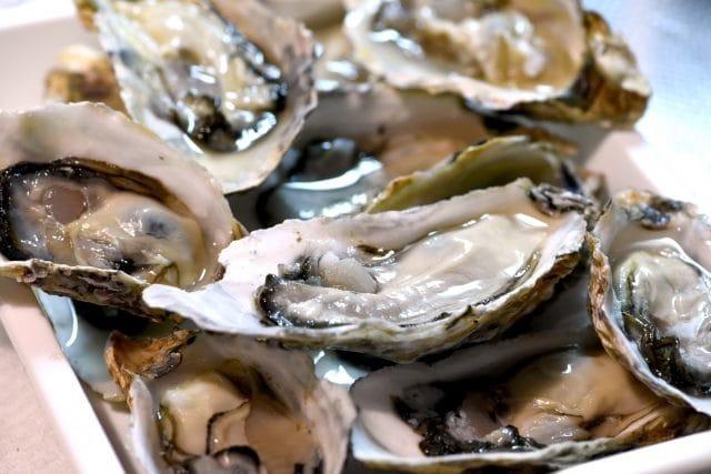 今年も解禁しました!牡蠣好きが教える三重県鳥羽市の牡蠣食べ放題おすすめスポットと豆知識!